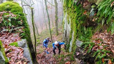 Trail hivernal 31km 2019
